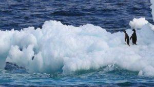 Antarktis verliert binnen 20 Jahren drei Billionen Tonnen Eis